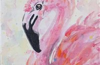 flamand rose 15x12/12€
